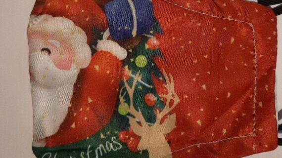 Christmas masks only €3.40 – 2 layer adult Christmas facemasks. Buy Christmas masks online Ireland